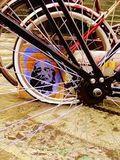 Ric Stott - Bike - Christ