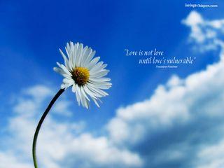 Vulnerable love