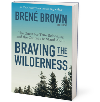 Braving the Wilderness - Cover